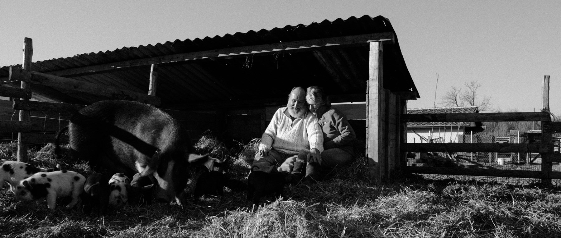 Jane and Nick with BlackBetty and piglets - December 2016