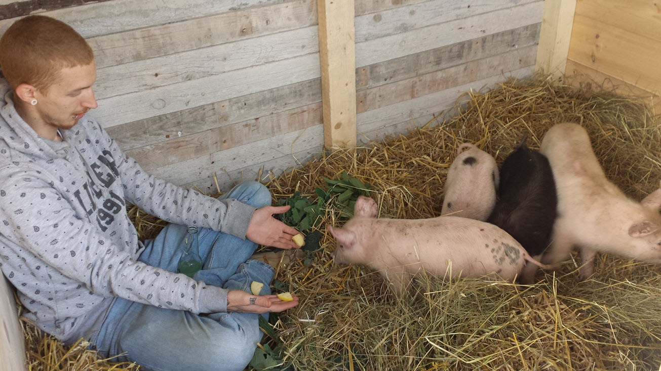Day 1 hand feeding the piglets